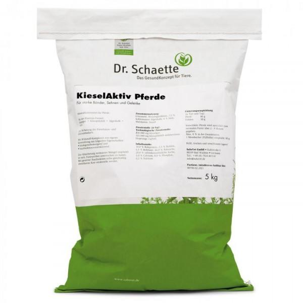 Dr.Schaette KieselAktiv