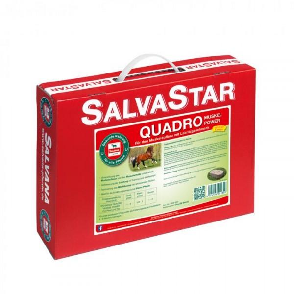 SALVASTAR Quadro