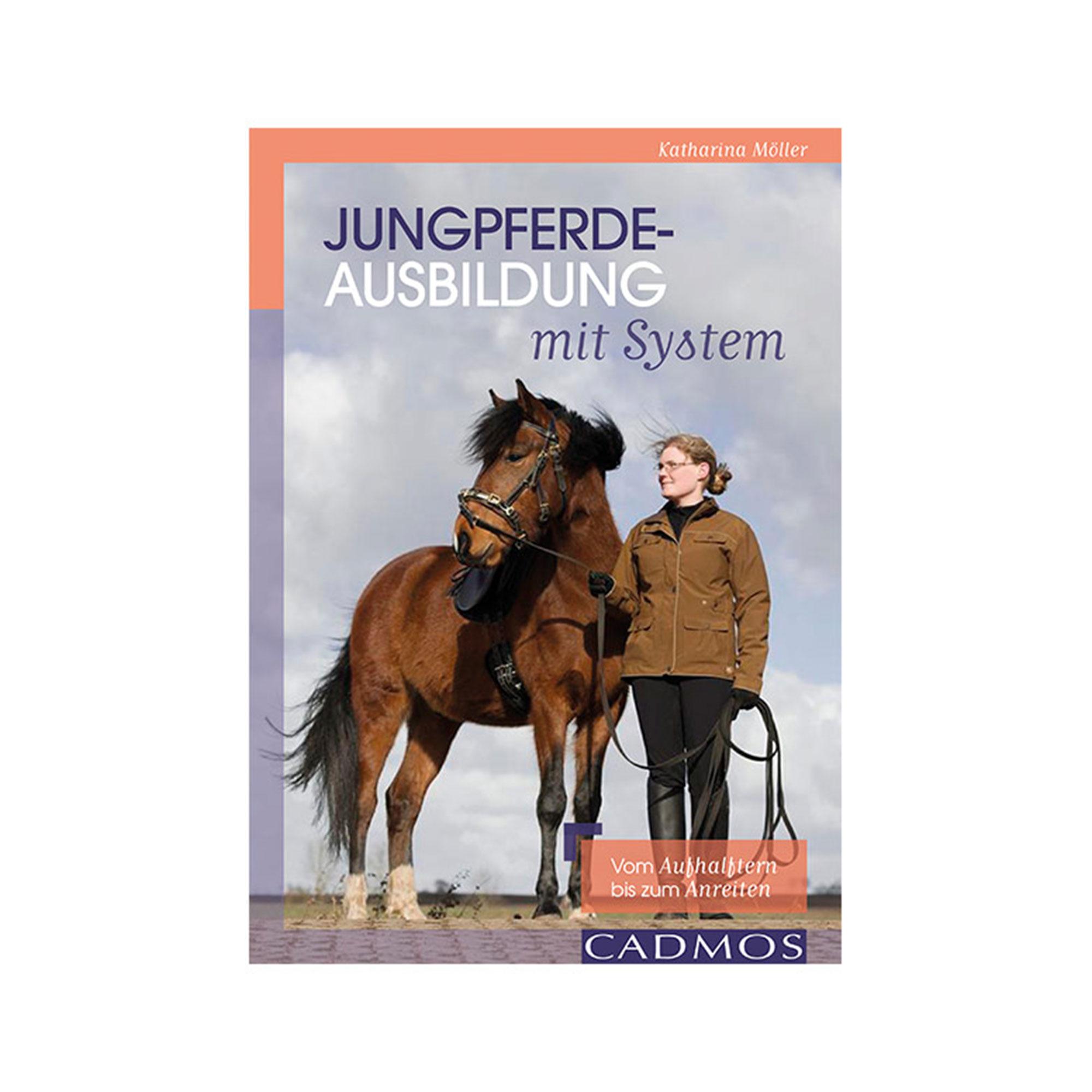 Katharina Die Große Pferd Gestell: Junge Pferde Mit System Ausbilden