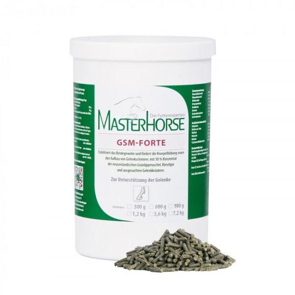MASTERHORSE GSM-Forte