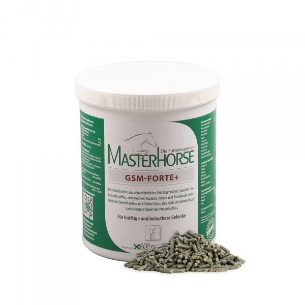 MASTERHORSE GSM-FORTE+